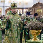 В праздник Входа Господня в Иерусалим епископ Савватий сослужил главе Приамурской митрополии
